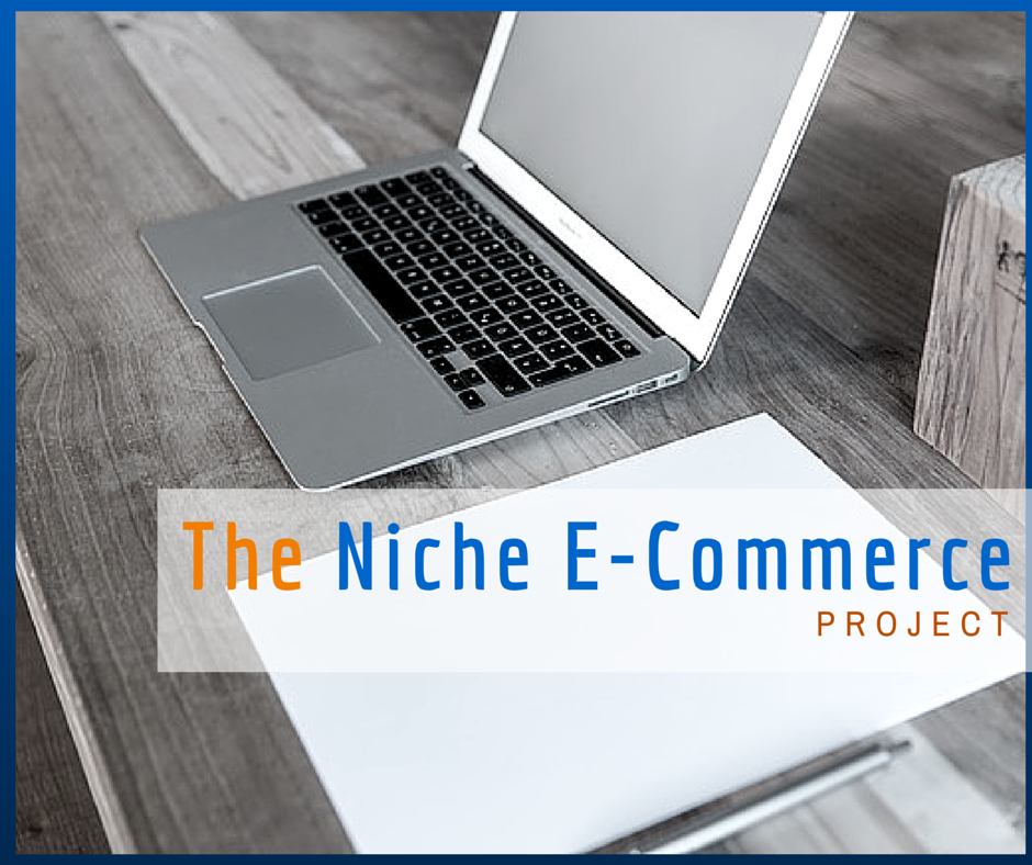 The Niche E-Ecommerce Project